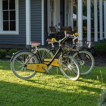 BCI Cruiser Bikes